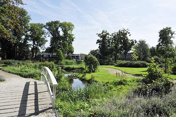 Volkspark in Zaandam bloeit als nooit tevoren