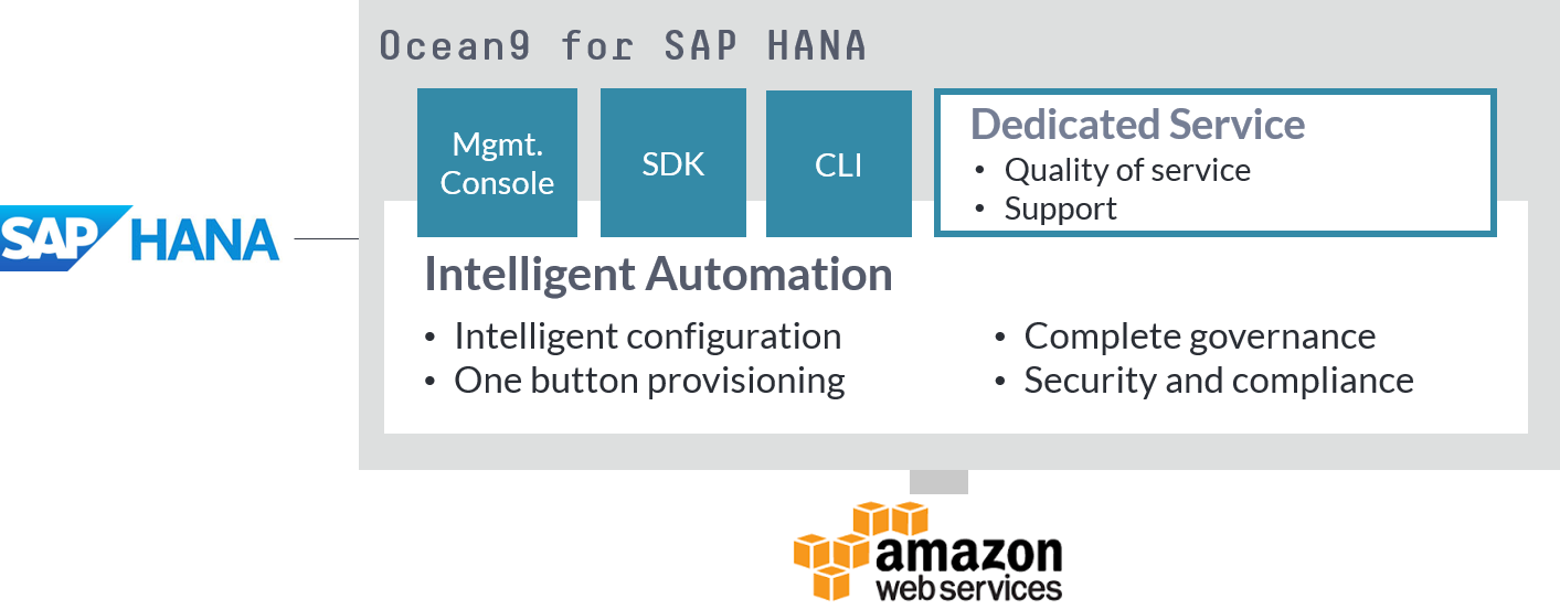 SAP HANA cloud service on AWS