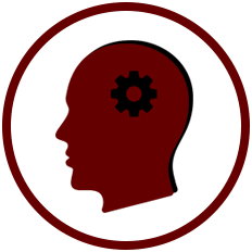 Knowledge Vector