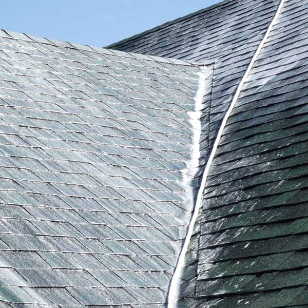 Roof cleaning can greatly improve your curb appeal