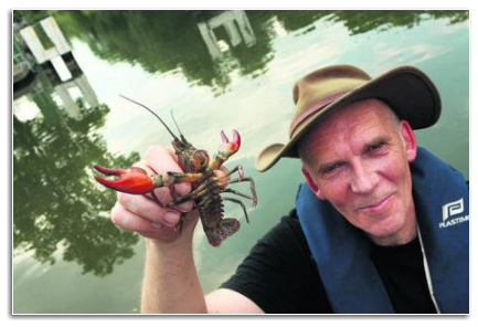Crayfish Bob's mission to protect Thames from American invader