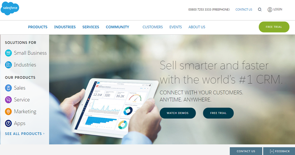 salesforce website print screen