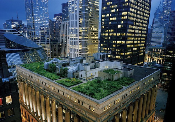 New York City commercial rooftop farms began to grow in earnest in 2011