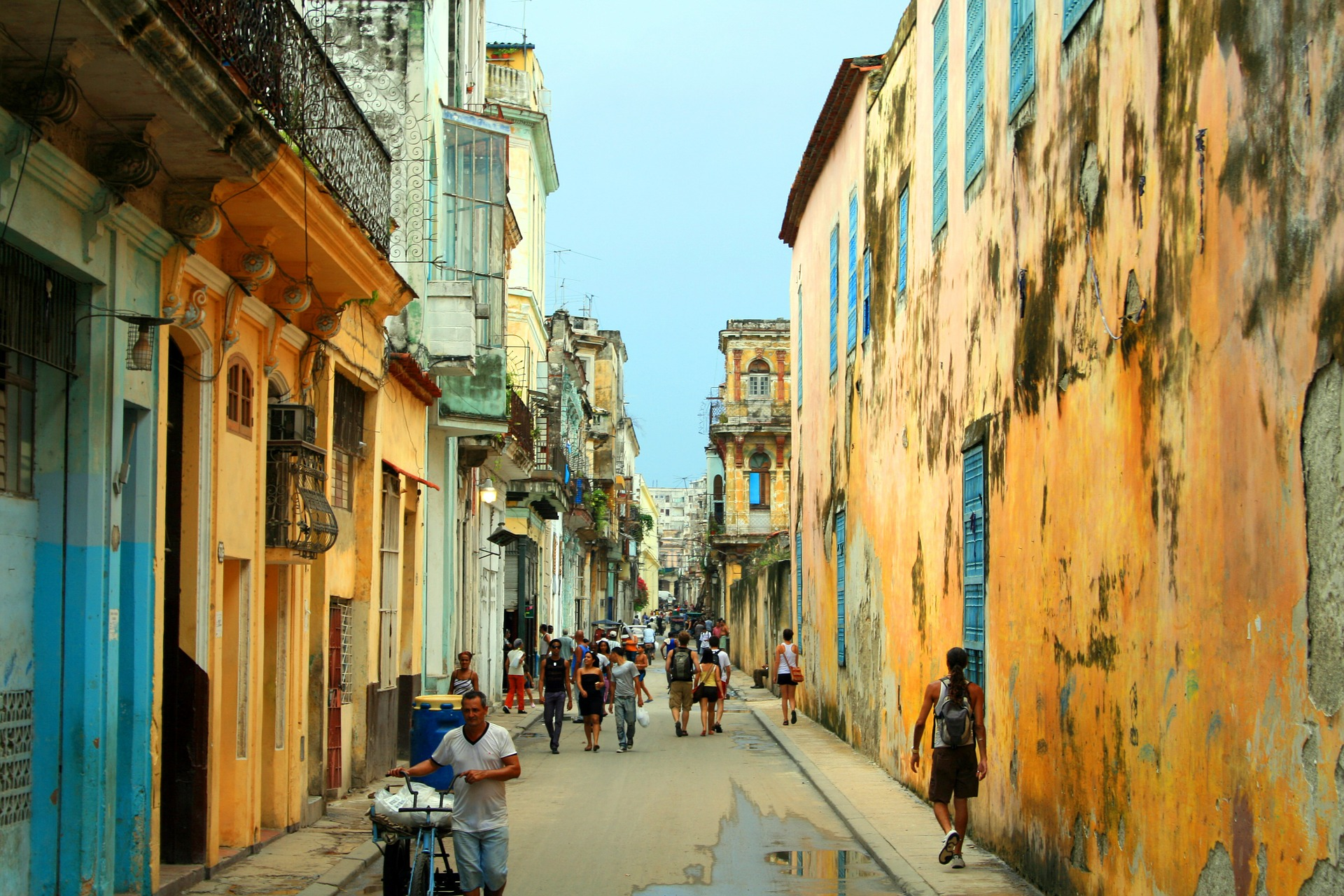 Havana has a strong urban and peri-urban farming infrastructure