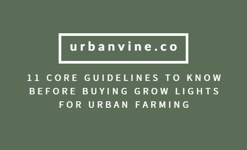 11 Core Guidelines To Know Before Buying Growlights