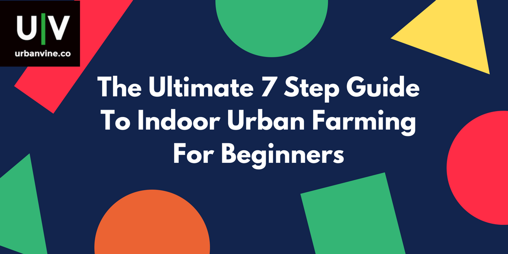Urban Farming Insider: Hedi Baxter Lauffer, Founder of LED Habitats