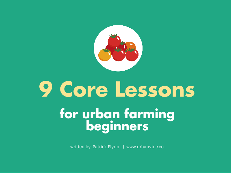9 Core Lessons For Urban Farming Beginners