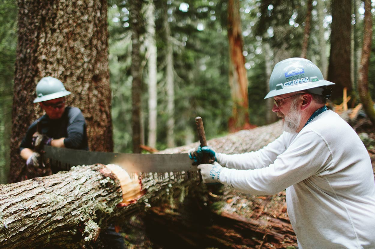 Uphill volunteer and North 350 Blades sawyer
