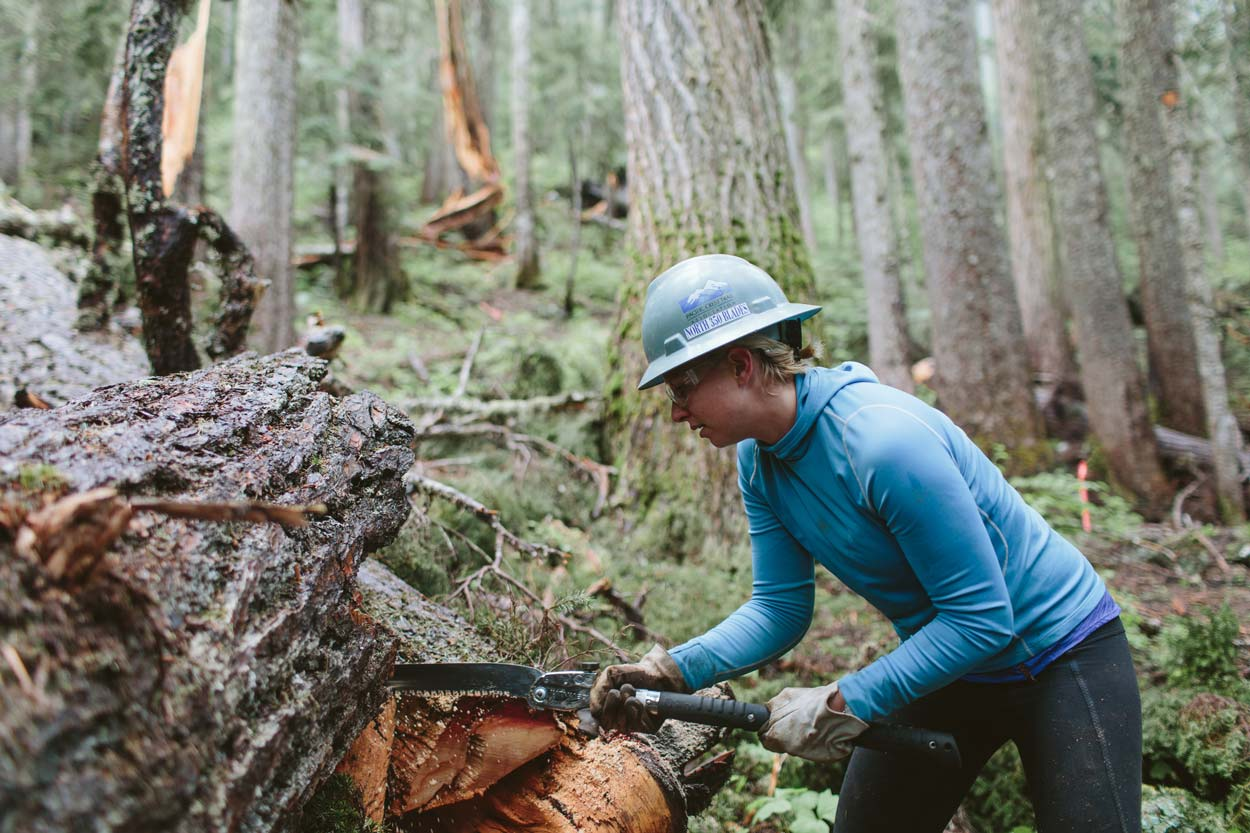 Logging out the Pacific Crest Trail