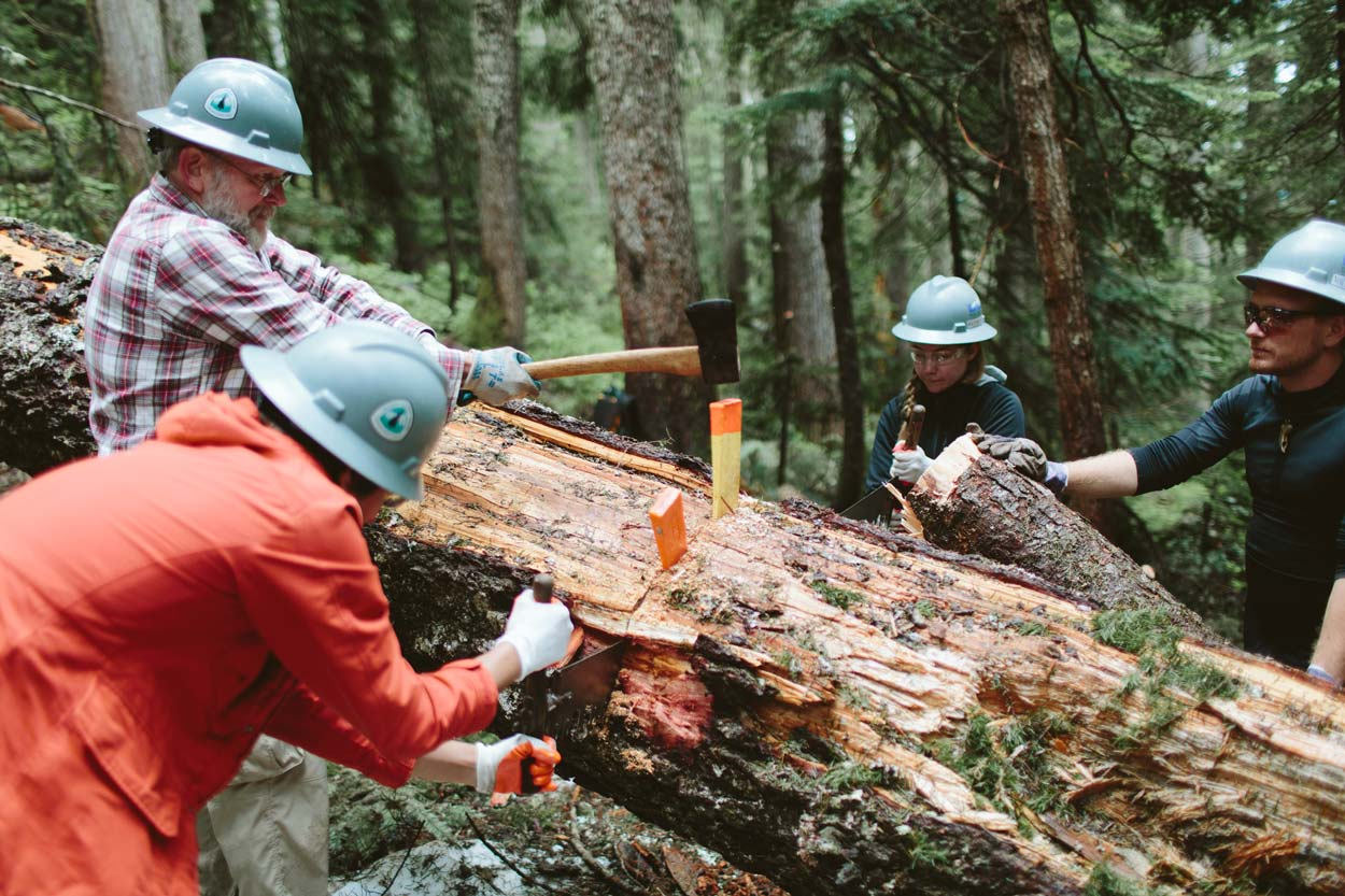 Work party cutting logs along the Pacific Crest Trail