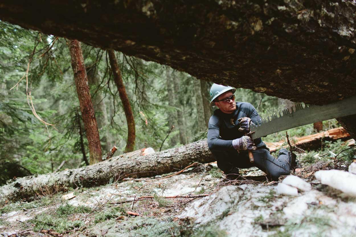 Wes de-logging the PCT