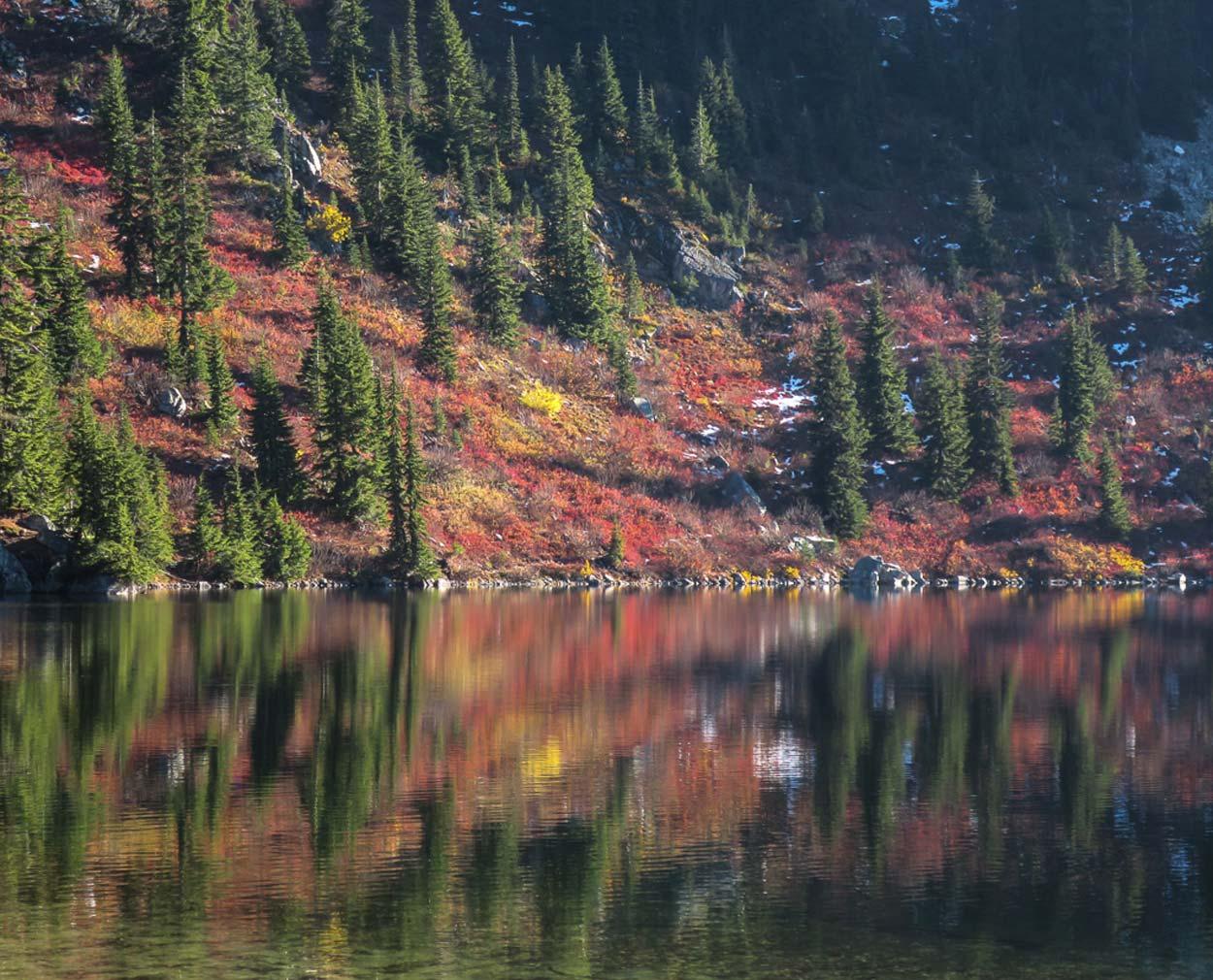 Perfect reflections along Lake Valhalla