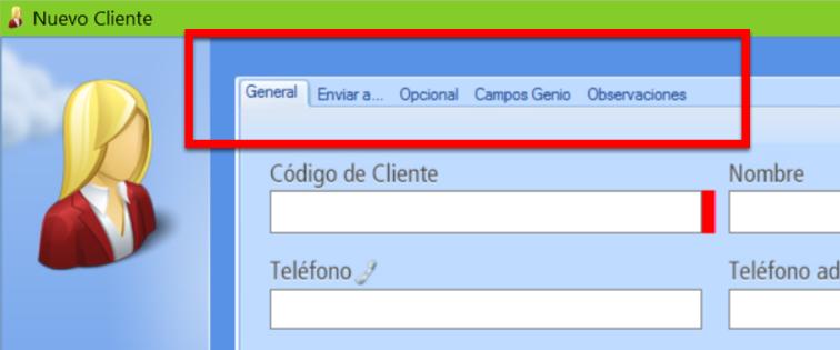 El registro de un cliente se organiza en pestañas con campos para completar datos
