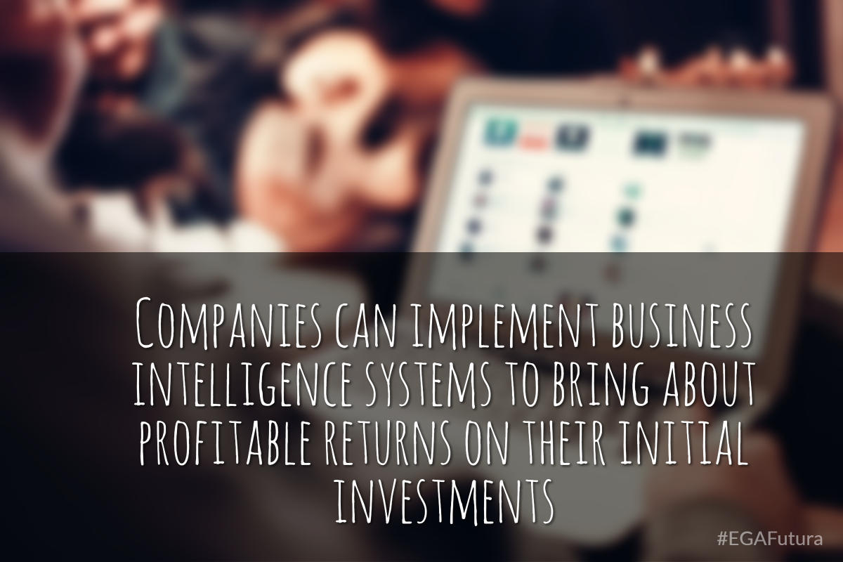 Companies can implement business intelligence systems to bring about profitable returns on their initial investments