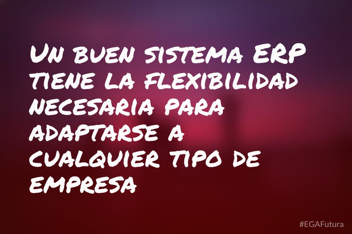 Un buen sistema ERP tiene la flexibilidad necesaria para adaptarse a cualquier tipo de empresa