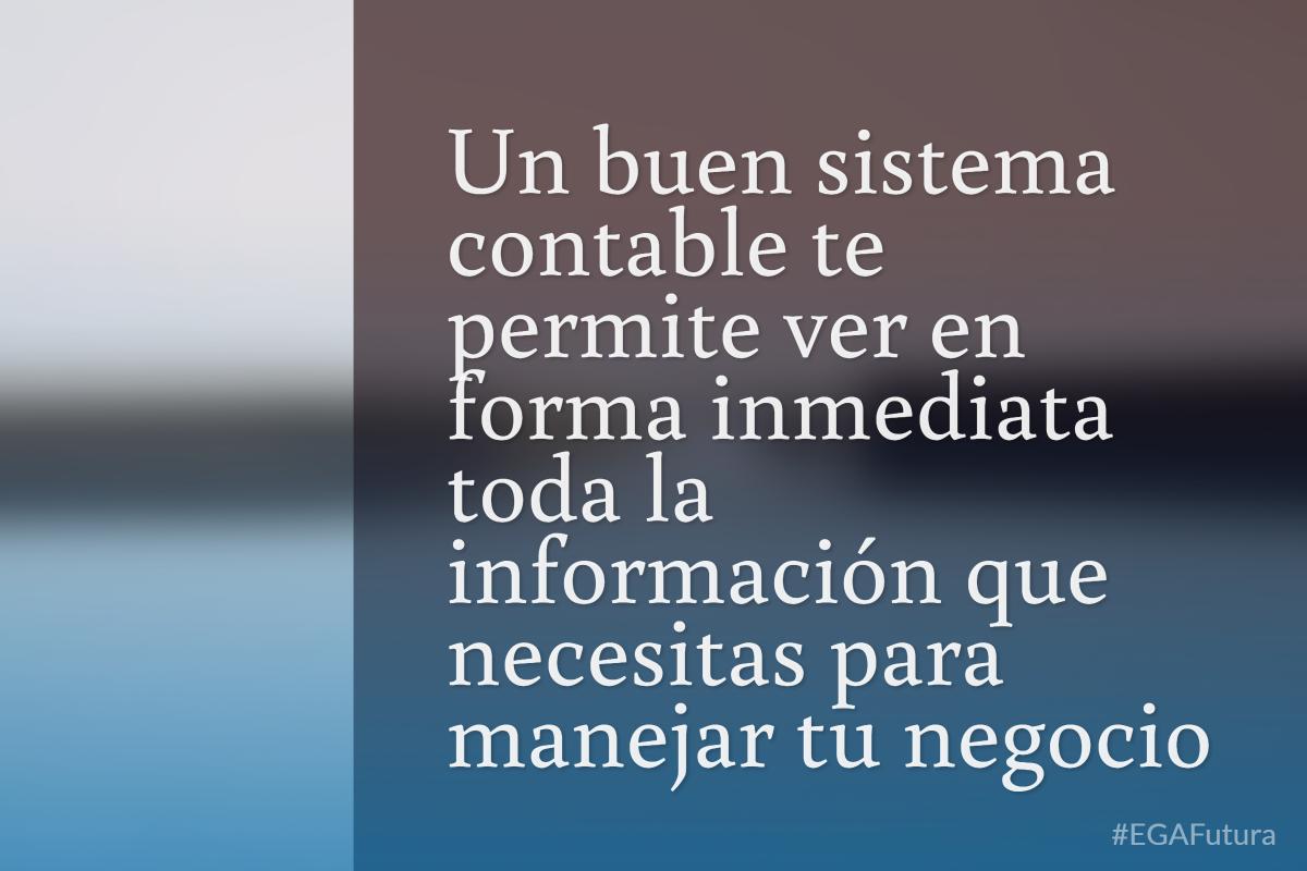 Un buen sistema contable te permite ver en forma inmediata toda la información que necesitas para manejar tu negocio