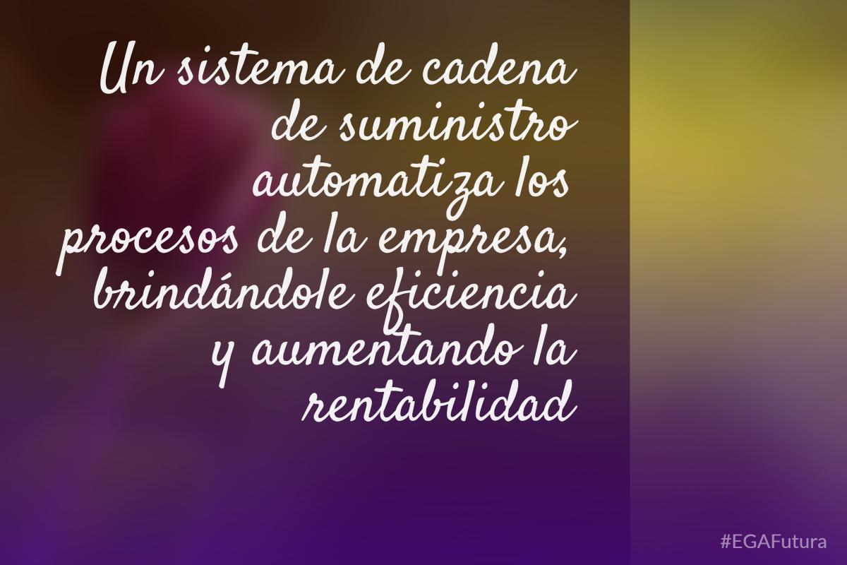 Un sistema de cadena de suministro automatiza los procesos de la empresa, brindándole eficiencia y aumentando la rentabilidad