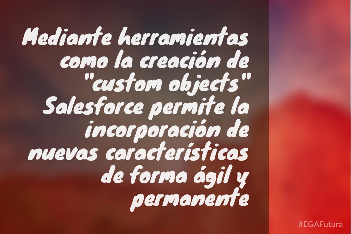 """Mediante herramientas como la creación de """"custom objects"""" Salesforce permite la incorporación de nuevas características de forma ágil y permanente"""
