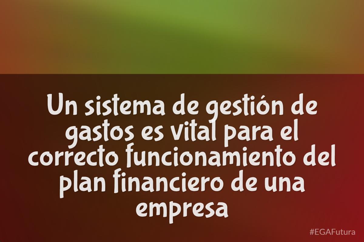 Un sistema de gestión de gastos es vital para el correcto funcionamiento del plan financiero de una empresa