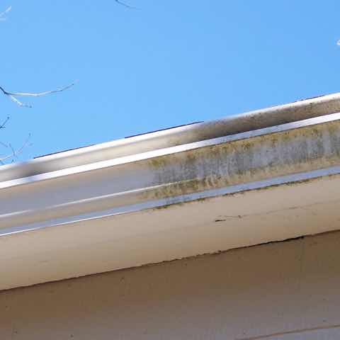 Gutter Brightening in Raleigh