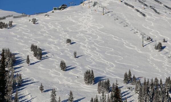 Powder Lines