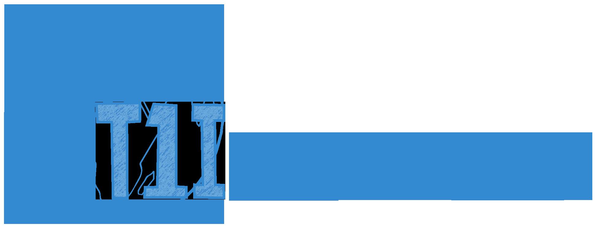 Type 1 International partnership