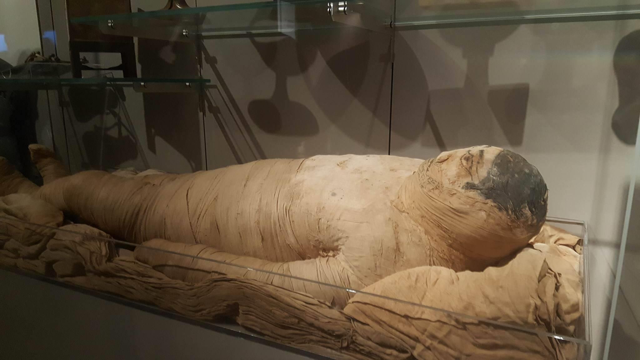 Mummy in Museo Egizio in Turin