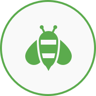 Bienen Ikone
