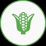 Lebensmittel Symbol
