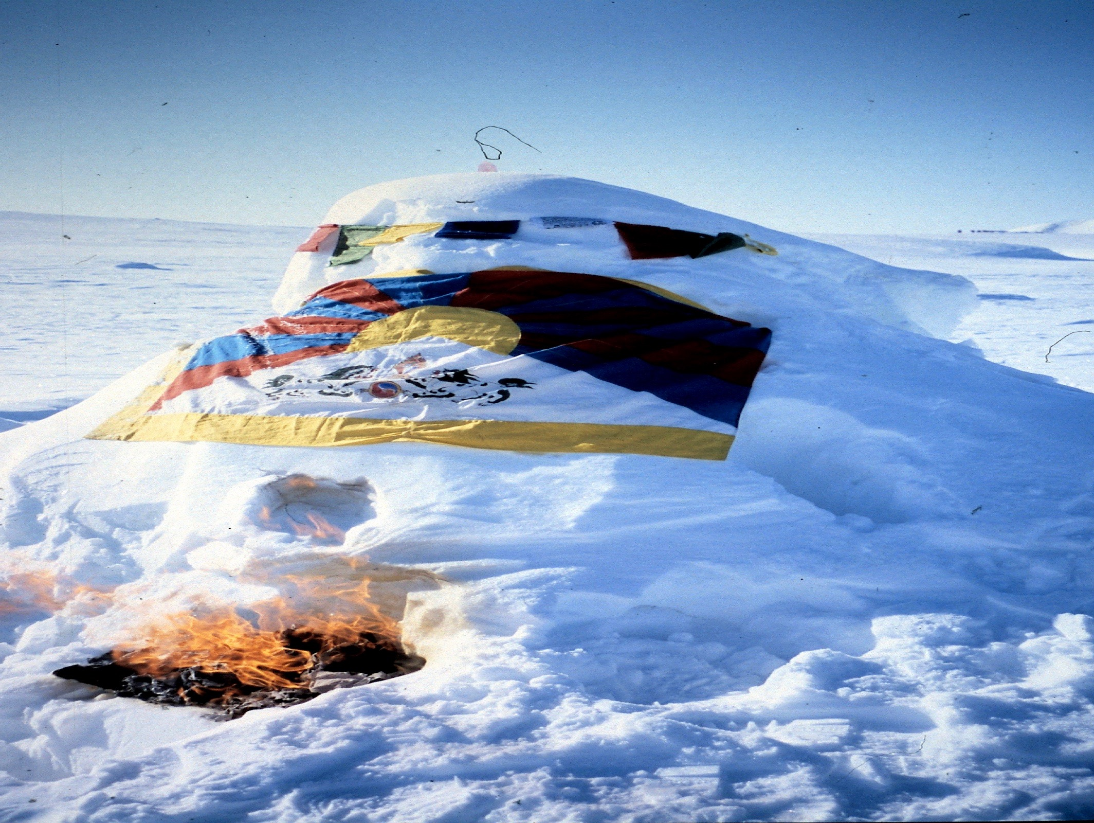 Sony Polar Challenge Race