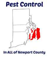 Exterminating Service in Newport Rhode Rhode Island
