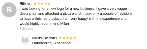Fiverr logo designer review outlining how vague a description they were provided.