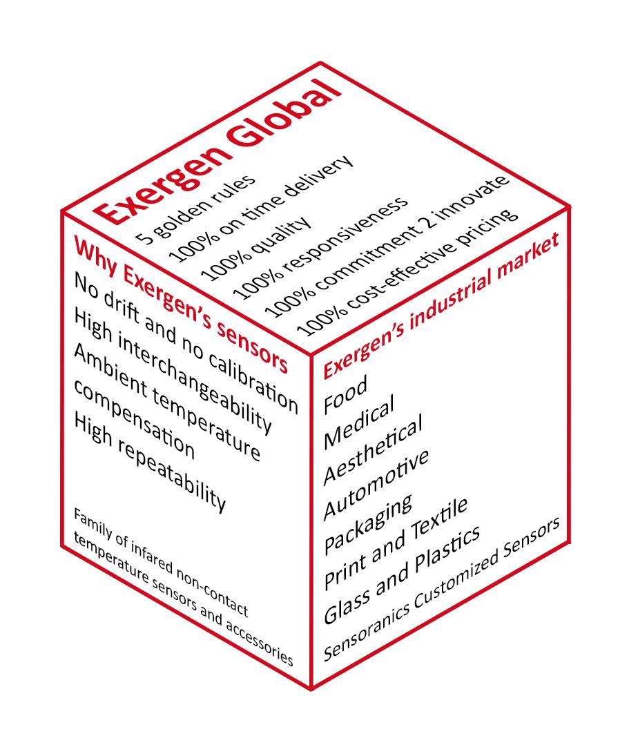 Exergen Global Cube