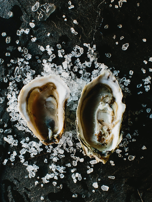 Learning to Love Oysters and White Wine
