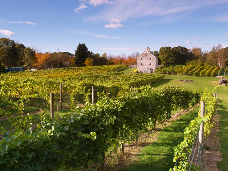 A Weekend Wine Tour of Boston's North Shore