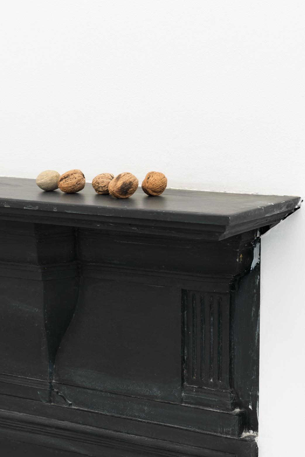 Petra Feriancová,  Survivals, Relics, Souvenirs.  Nuts, 2013. Tenderpixel Gallery.
