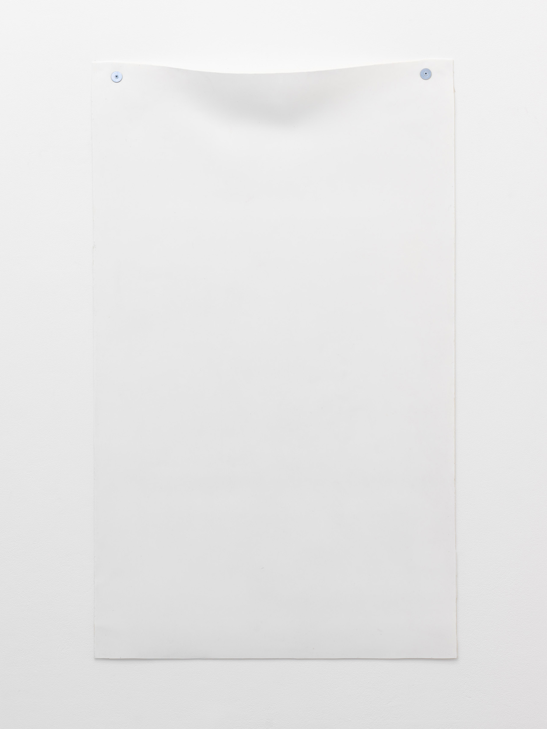 Andrea Zucchini, Untitled, 2014. Cast silicone, white lead, antidepressant, fixings.