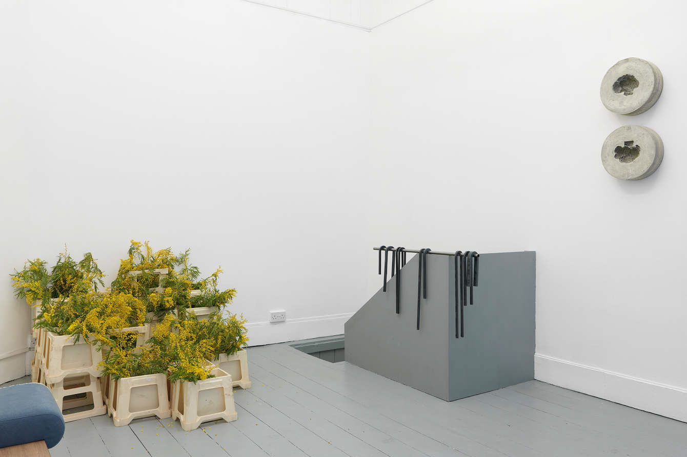 Olivier Castel, Mimesis. Florian Roithmayr. Installation View. Tenderpixel.