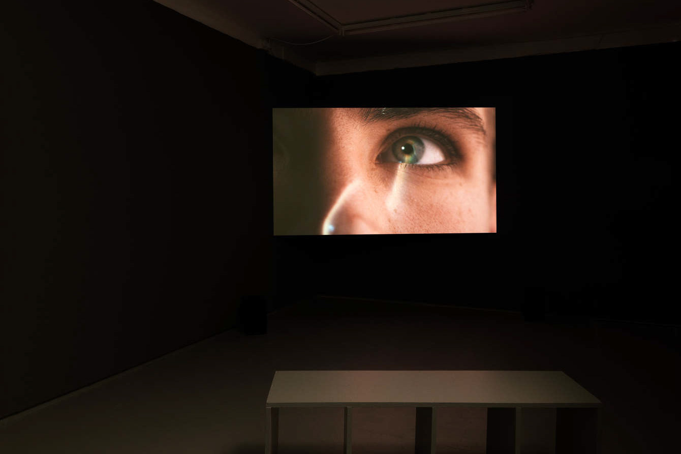 Installation view, Ilona Sagar, 'Haptic Skins of a Glass Eye', 2015, Tenderpixel.