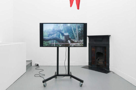Installation view, Pedro Barateiro. Tenderpixel.