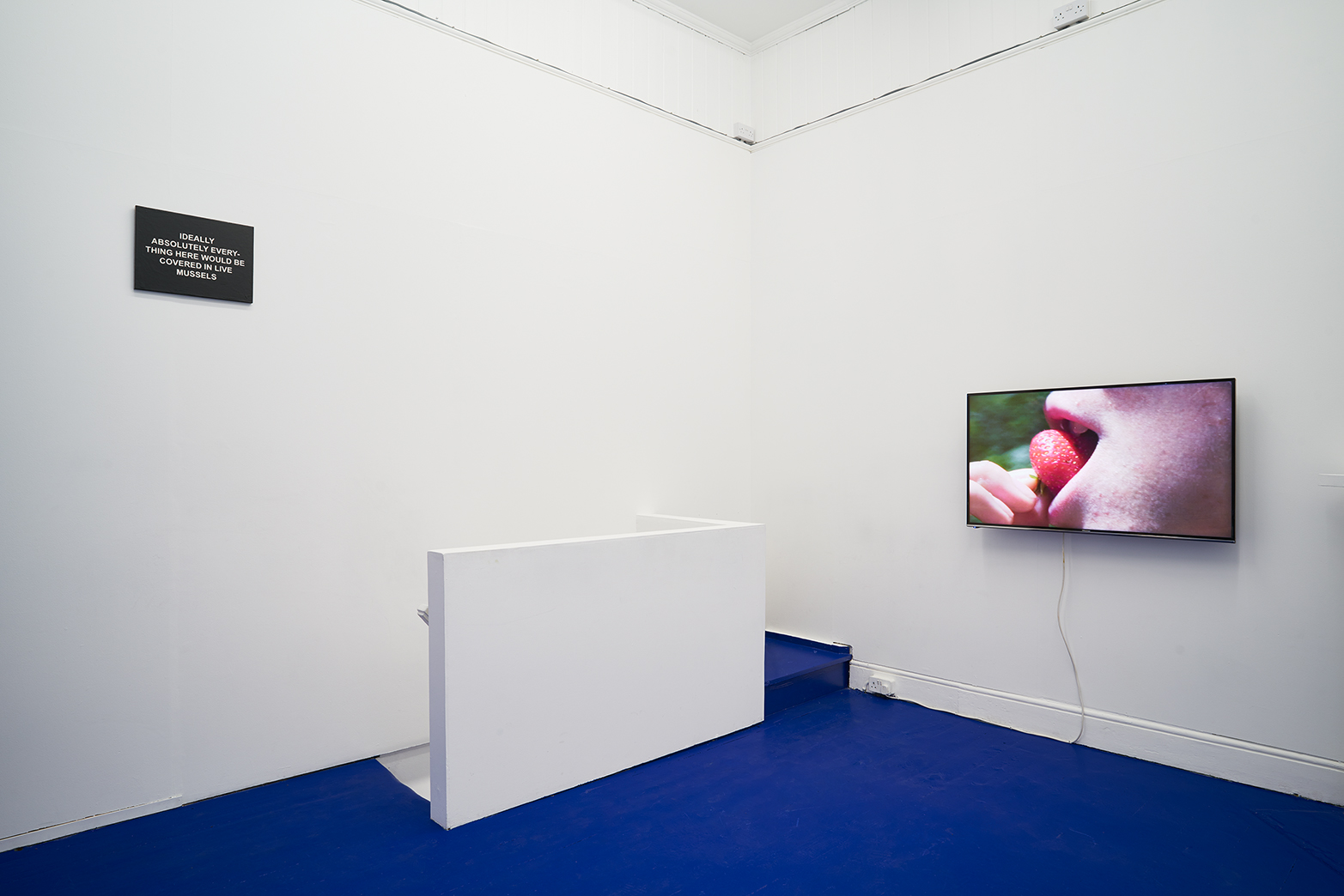 Tropical Hangover, Installation view with works by Laure Prouvost. Tenderpixel.