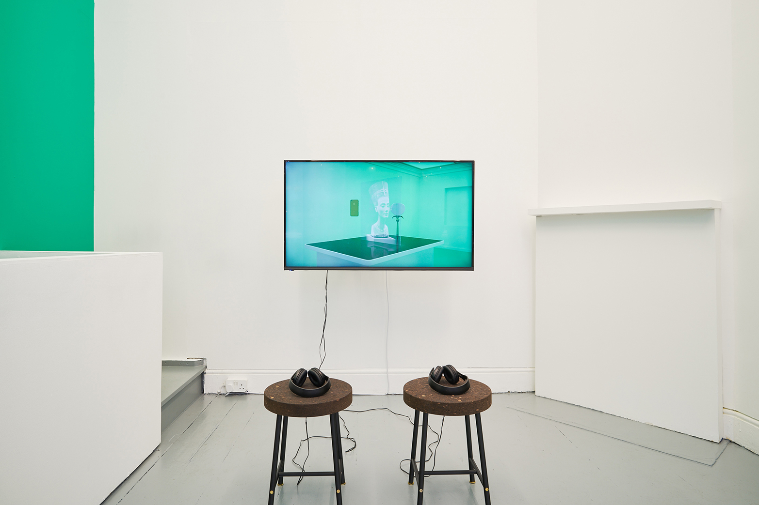 David Ferrando Giraut, CATOPTROPHILIA, 2013. Digital animation with sound, 12'14''. Installation view at Tenderpixel.