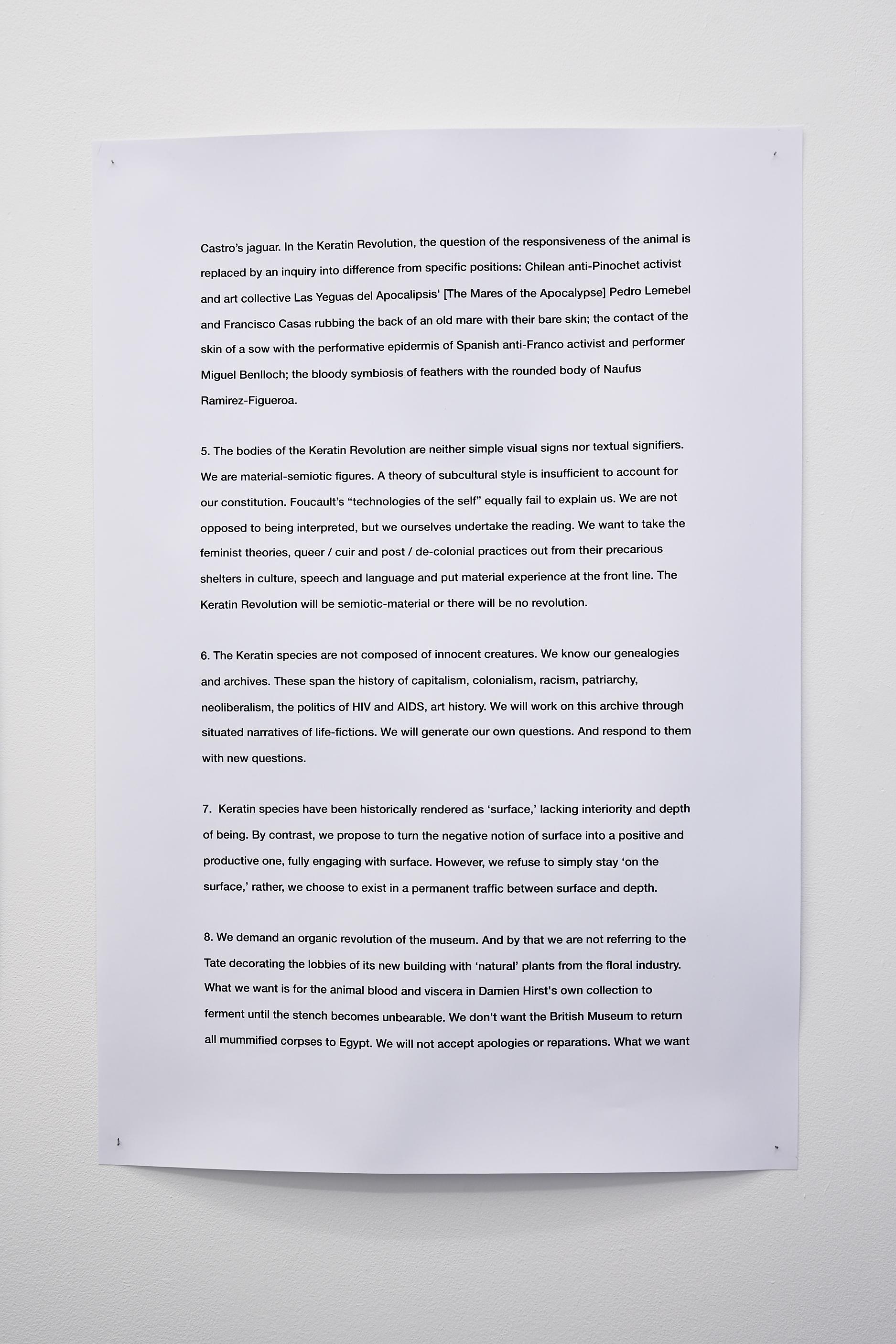 Aimar Arriola, Keratin Manifesto, 2017.