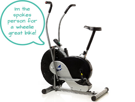 Indoor Cycling Bike - Body Rider Fan Bike