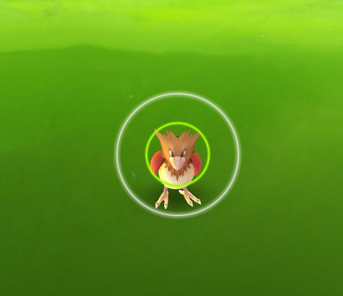 Pokémon Go Mobile App