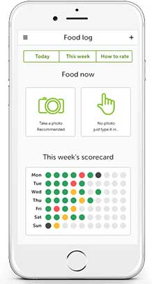 Screenshot of the app's food log screen