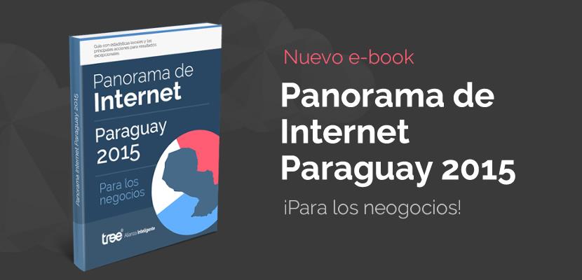 Panorama de Internet en Paraguay 2015 ¡Para los negocios!