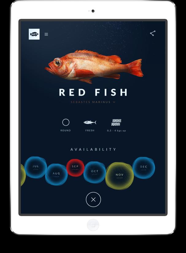 Wetfish website on iPad