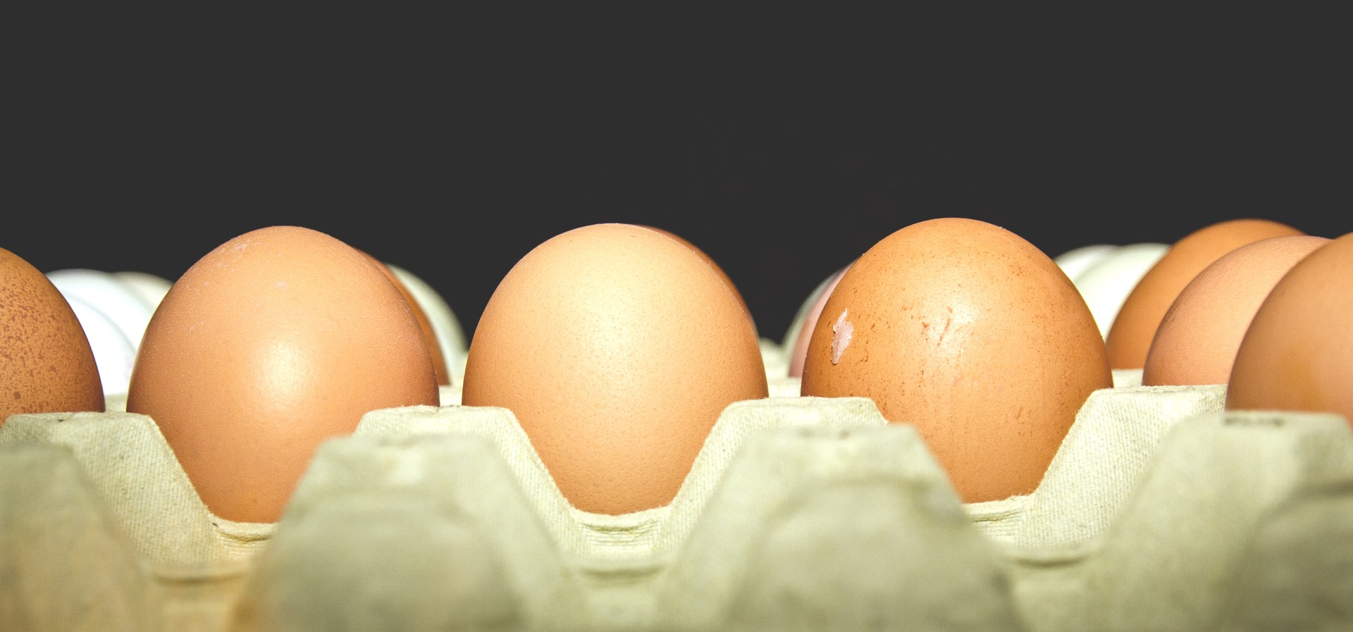 The Good, the Bad and the Eggly...
