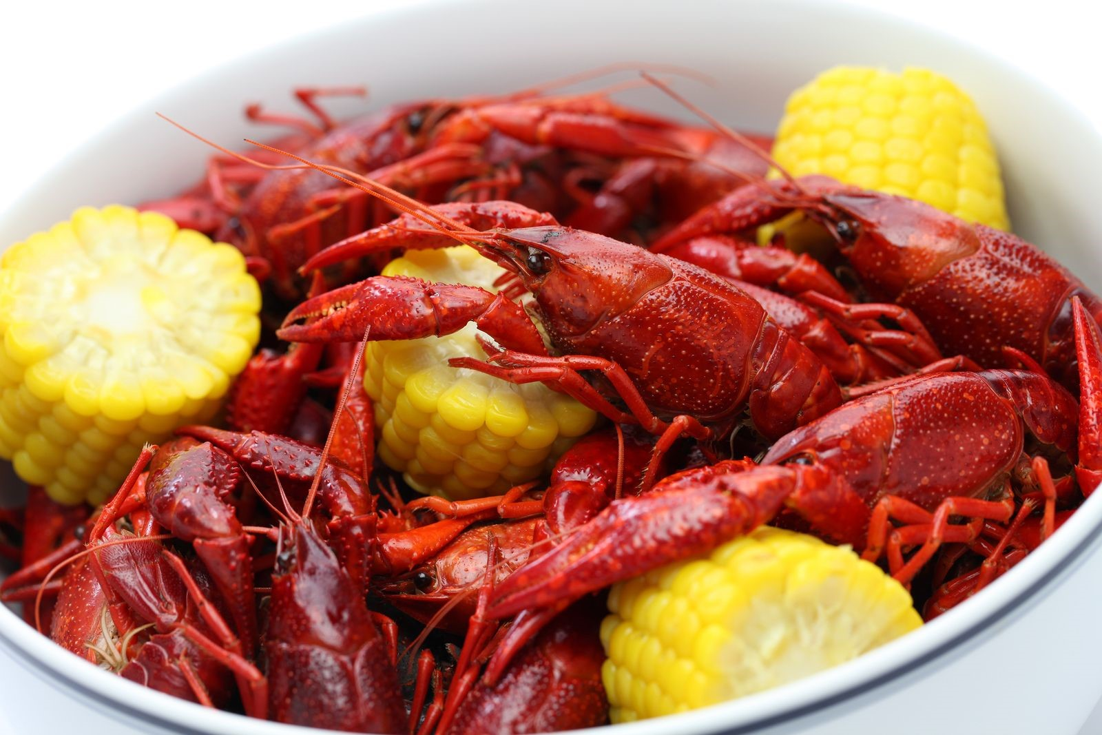 Crawfish is Often Served on a Platter: Prepare to Get a Bit Messy